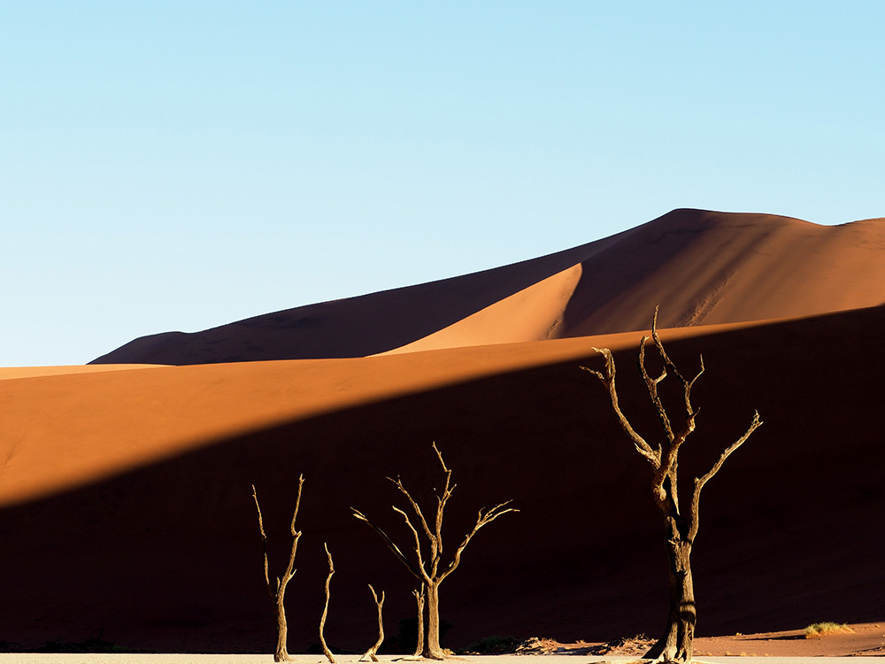 The Deadvlei