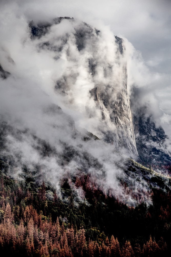 The magnificence of Yosemite