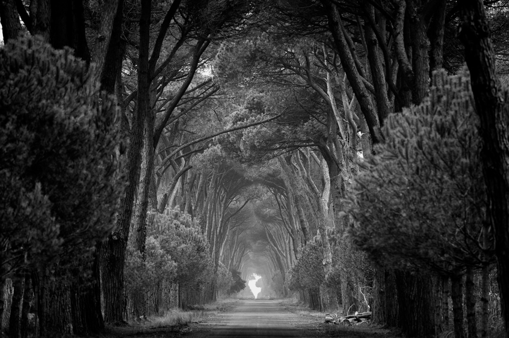 The paths of Tuscany