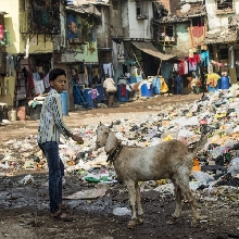 Working in Mumbai slum
