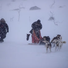 Expedition experience in the Arctic