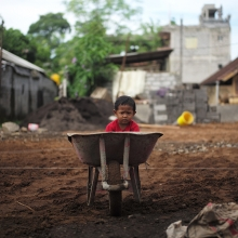 Child sitting in wheelbarrow