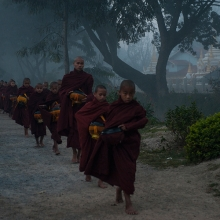 Foggy Morning Monks